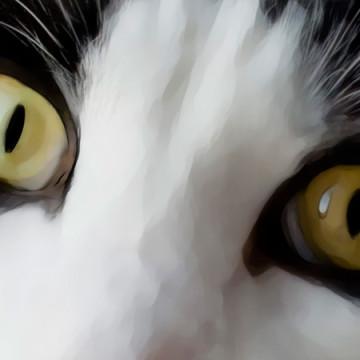 Watercolor Oreo